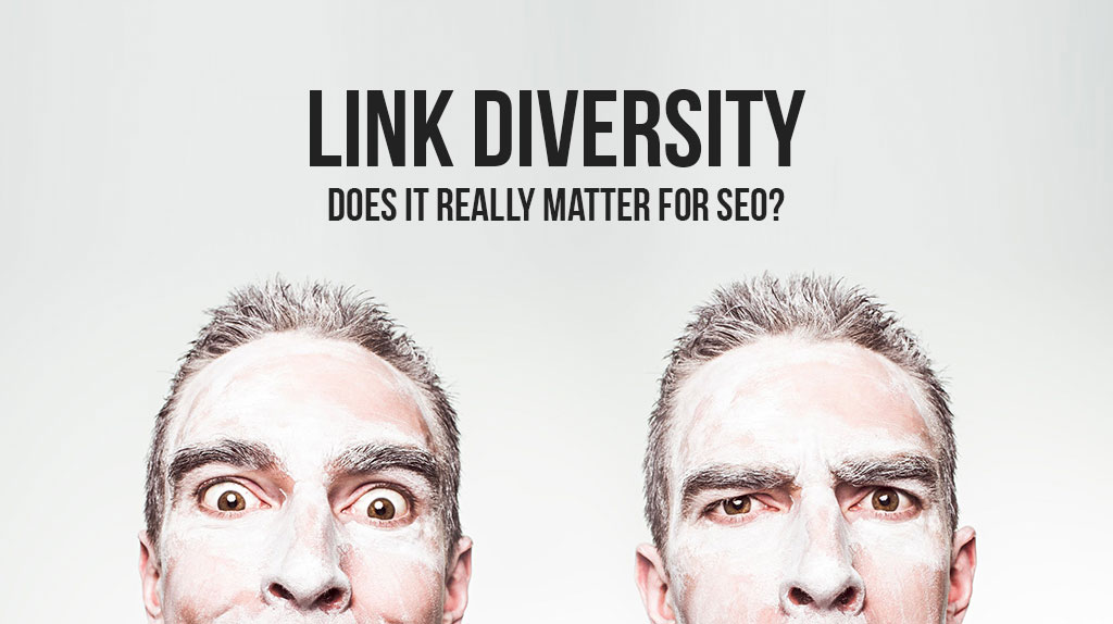 Why You Should Incorporate Link Diversity in your SEO