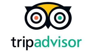 Trip Advisor's logo.