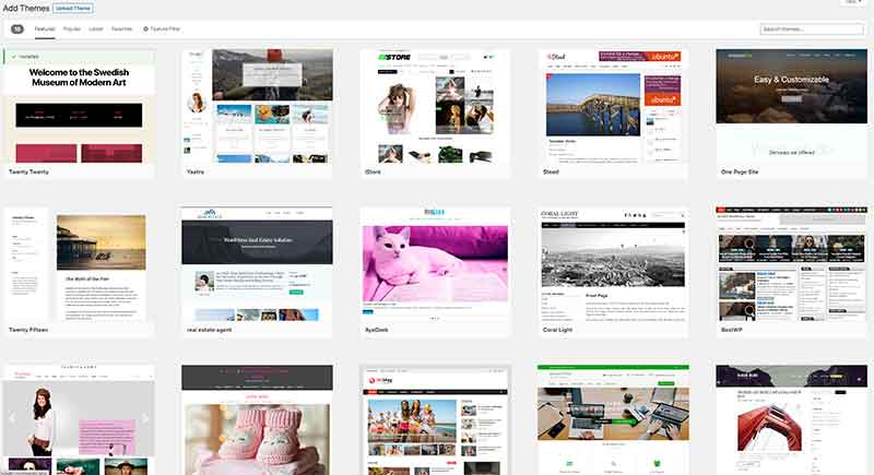 Examples of different themes on WordPress.